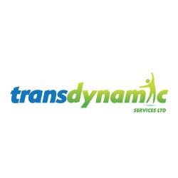 transdynamic